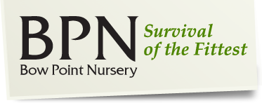 Bow Point Nursery Ltd Logo